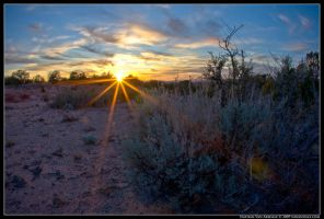 Desert Twilight by navandale