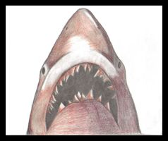 Jaws by deathtoserenity