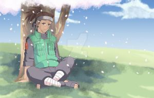 Iruka Under Sakura by Mockingbyrd