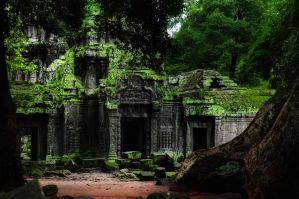 Ta Prohm - 2 by DawnRoseCreation