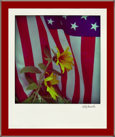 Old Glory with sunflowers by teddybearcholla