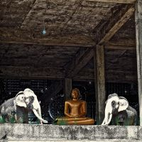 Two elephants and a Budda. by jennystokes