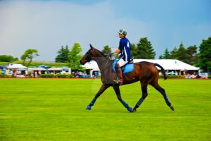 Playing Polo 10 by filemanager