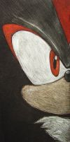 Shadow the Hedgehog by NicoTopin
