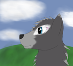 Wolf practice by portals2user