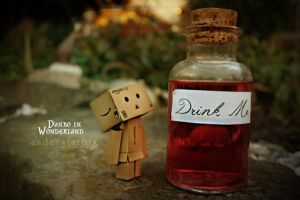 danbo by pixelphreek