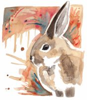 Rabbit by Paintwick