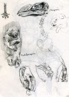 Hunterian sketches by Nicoll