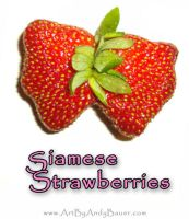 Siamese Strawberries by Art-by-Andy