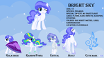 BRIGHT SKY REFERENCE by JustCarolineKlein