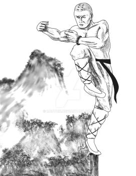 Monk Fighting by Rauthik