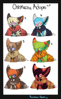 Chinkachu Adopts by Rainbows-Adopts