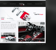 5. Audi TTS Coupe by env1ro