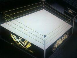 WWE '12: My Hall Of Fame Arena by TheRumbleRoseNetwork