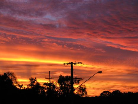 Suburban Sunset in Full Bloom5 by PinothyJ