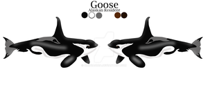 Goose Reference Sheet by NarniaOrca