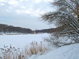 Winter Lake by exogadget