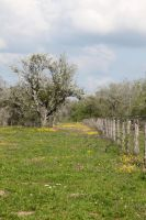 Fence Line 2 by Ironmountain01