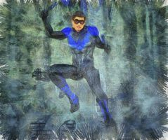Nightwing by hiram67