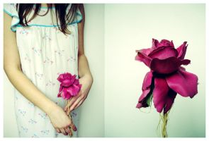 .delicate. by puf-puf