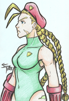 Cammy by joysuko