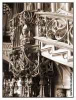 Vienna Cathedral - pulpit1 by Faeriedivine