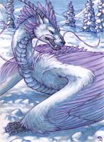 ACEO for Cloudstar-wolf by Dragarta