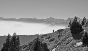 Chartreuse et Vercors by CharlieMerci