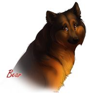 Bear the Dog by Ellakins