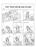 The true Keyblade exam by ChibiLuka