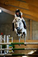 Showjumping by Colourize