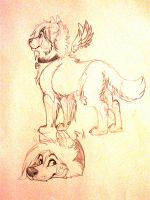 Durpy Sketches by Ifus