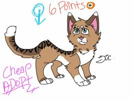 6 point cat adoptable (OPEN) by xXFluffehWolfXx