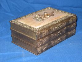 Jewelry box1 by minystock