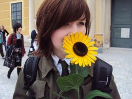 Lithuania with Sunflower by littleLithuania