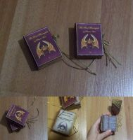 'The Real Barenziah' mini book by Sereniti-Dragonheart