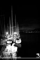 Docked by FeatheredPhoto