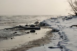 frozen seashore II by Wilithin