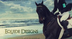 Unnamed Beach Horse Pic by EquideDesigns