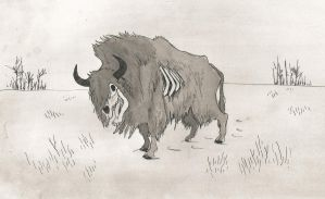 Buffalo Ghost by CindarellaPop