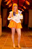 SAC11 - Sailor Venus and Artemis by BlizzardTerrak