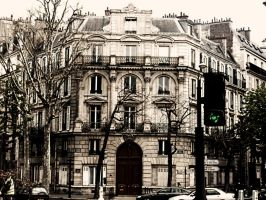 And old building in Paris, FR. by BirdieG