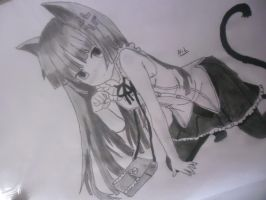 Kuroneko Drawing by nilsonpre