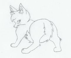 Sukira Coyote - Sketch by Darfix