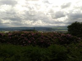 A view of Stirling by Squidgybuffalo
