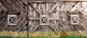 Barn Door with Windows by justamom