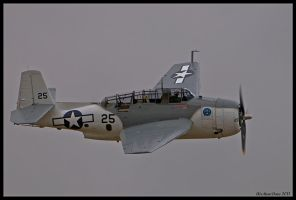 Planes of Fame 32 by AirshowDave