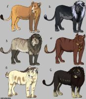 Lions and Lionesses Adoptables- SOLD by LeoNoy