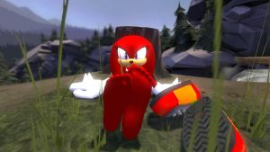 Summer Series: Knuckles by wantwon