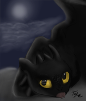 Moonlight shadows by Tenynn